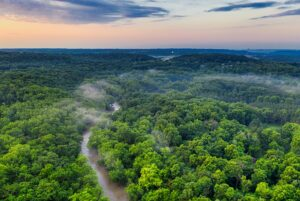 Five of the top rainforest destinations in the world